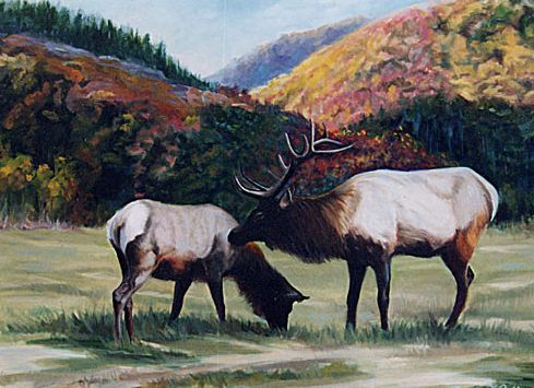 Original Oil Painting of 2 elk in Smoky Mountains