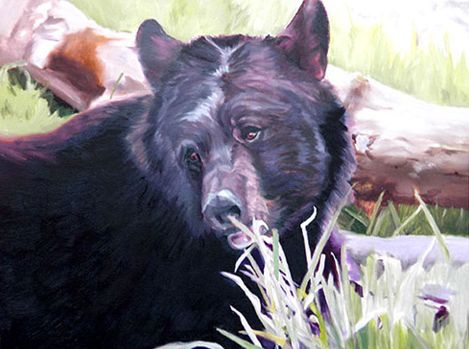 Original Oil Painting of American Black Bear head & shoulders