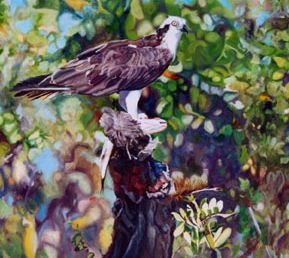 Original oil painting of perched Osprey