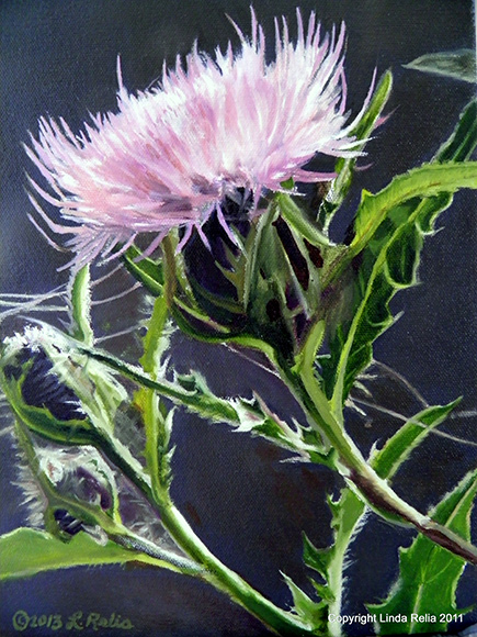Original oil painting of thistle